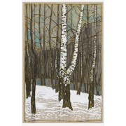 Birch Woods in Winter - Framed